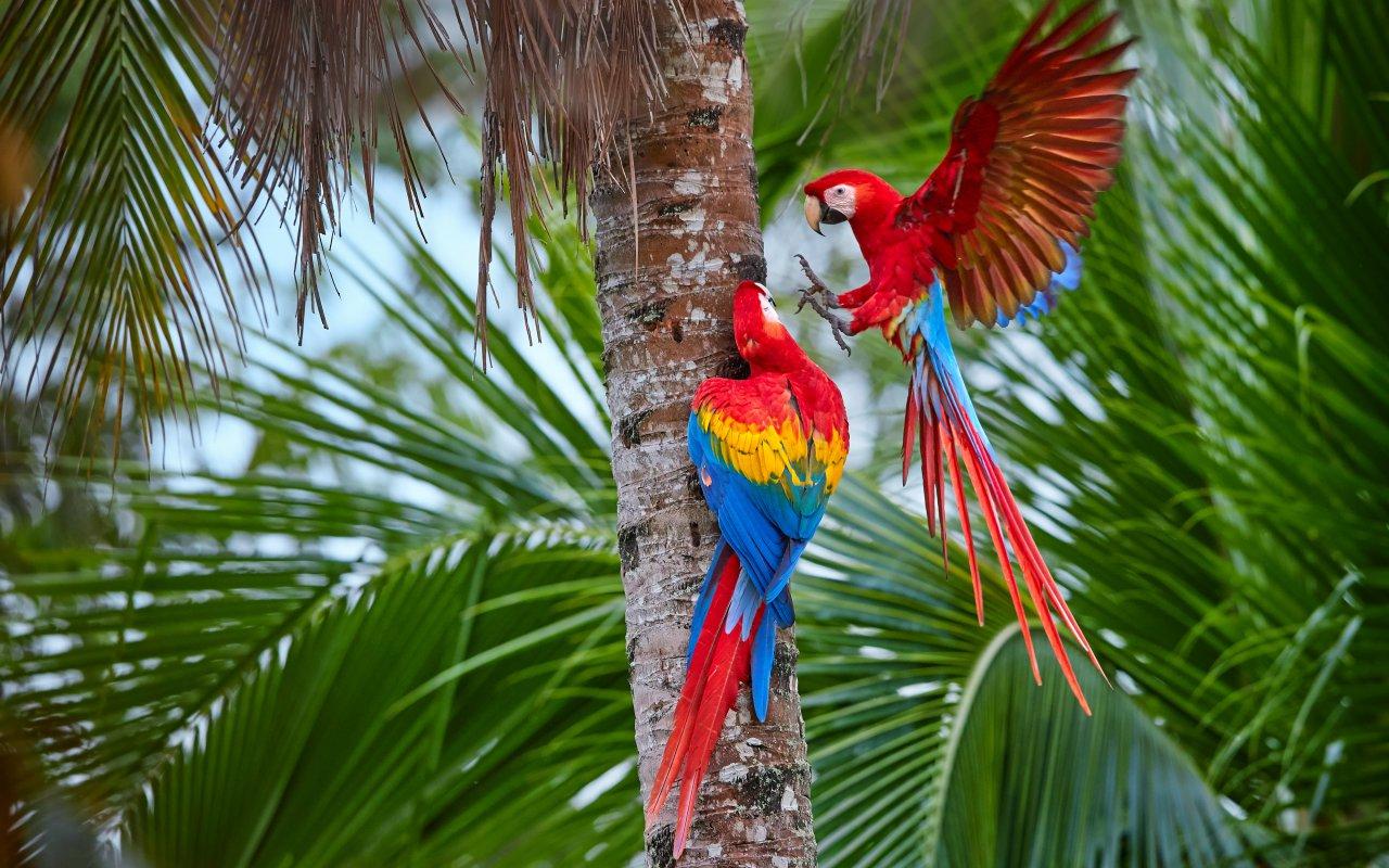 Exceptional honeymoon in Northwest Argentina & Iguazu