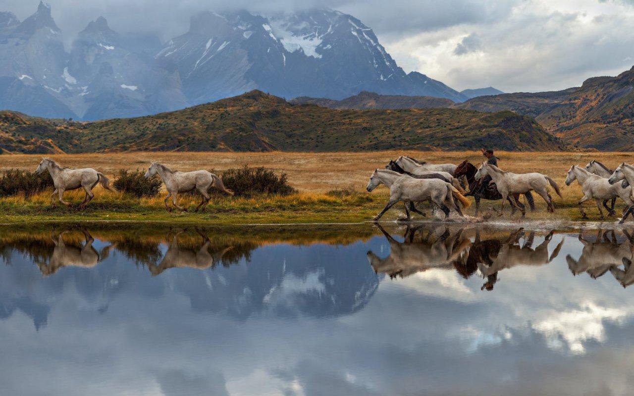 De Salta à la Patagonie chilienne et Argentine route 40 voyage agence francophone