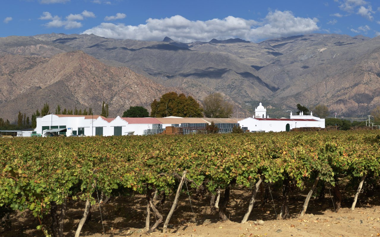 Vignobles & Culture du Nord-Ouest Argentin agence voyage salta
