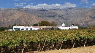 Voyage d'exception: Vignobles & Culture du Nord-Ouest Argentin