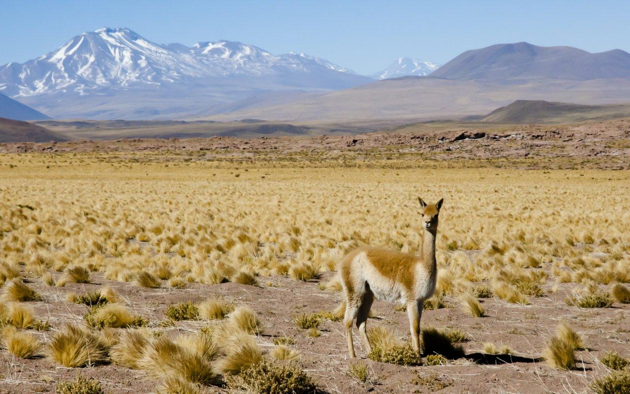 Route des six mile, catamarca, argentine voyage Terra Altiplano