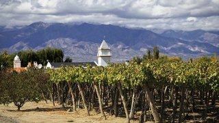 Voyage d'exception entre vignes et estancias