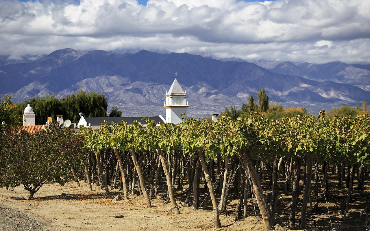 voyage luxe argentine vignes - terra altiplano