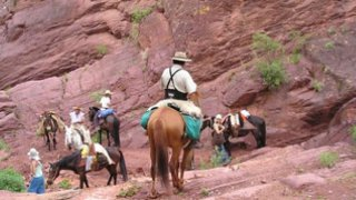 Randonnée à Cheval dans le nord-ouest argentin