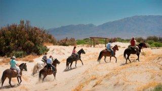 Cafayate randonnées cheval voyage Salta