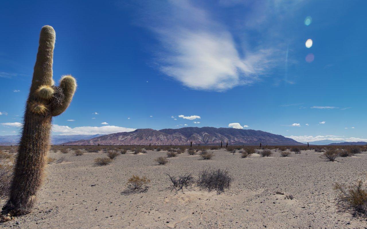 voyage sur mesure nord ouest argentin terra altiplano