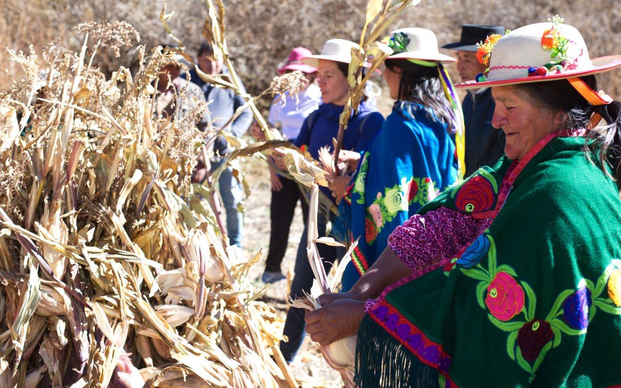 voyage nord argentine terra altiplano agence locale