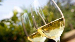 cachi bodega vin salta voyage argentine