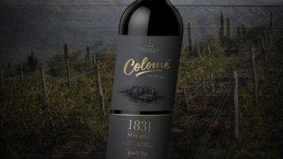 Bodega Colome vallées calchaquíes vin d'altitude