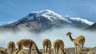 voyages multipays altiplano