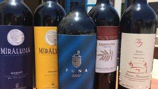 vignobles vin cachi, voyage salta argentine