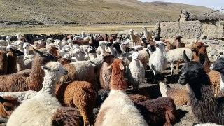 nord-ouest argentin voyage salta