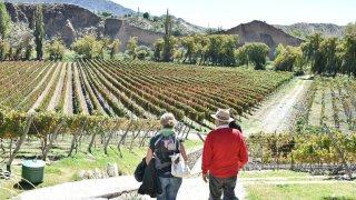 voyage argentine vignobles nord-ouest