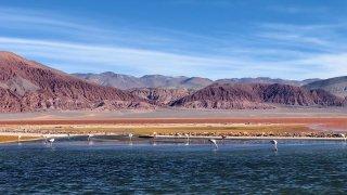 Terra Altiplano agence de voyage à salta en argentine