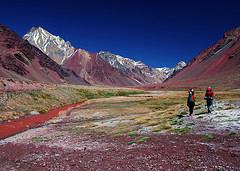 mendoza - par aconcagua - voyage argentine - terra altiplano