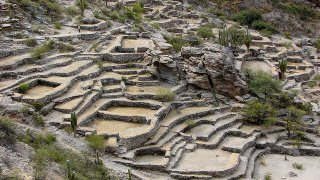 ruines quilmes - voyage nord ouest argentin - terra altiplano voyages