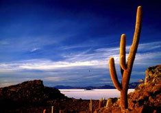salar uyuni - voyage argentine bolivie - terra altiplano voyages