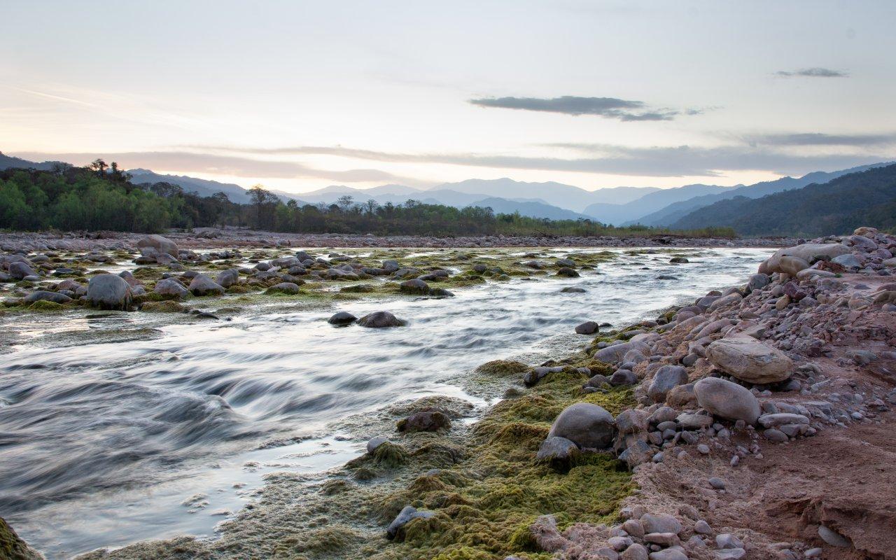 parc national calilegua - voyage salta parc nationaux