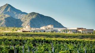 voyage d' expetion entre vignes et estancias