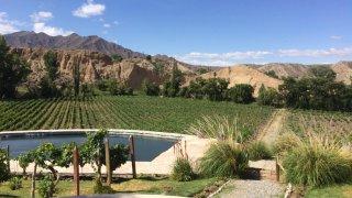 vignobles cachi salta vins voyage salta argentine